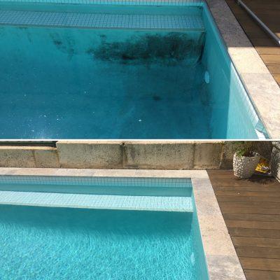 vblack spot algae in swimming pool